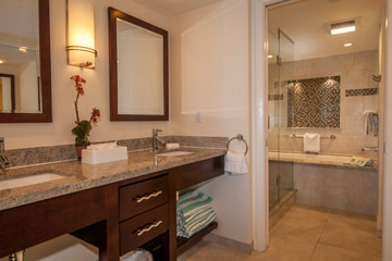 Penthouses master bathroom